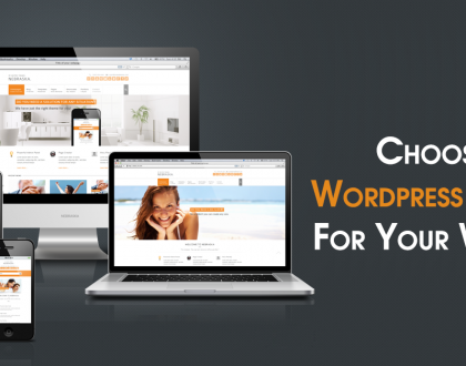 Selecting the right wordpress theme